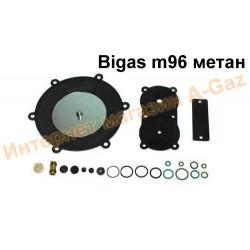 Ремкомплект редуктора Bigas m96 (KIRMB960000)