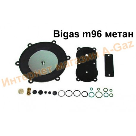 Ремкомплект для редуктора Bigas m96 (KIRMB960000)